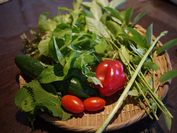 20120820収穫