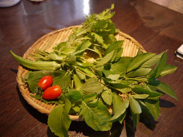 20120822収穫