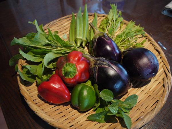 20120914収穫
