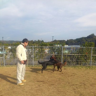 20121123浜松