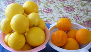 Cooking_Lemon&Orange