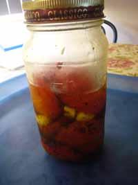 Cooking_SemidriedTomatoes