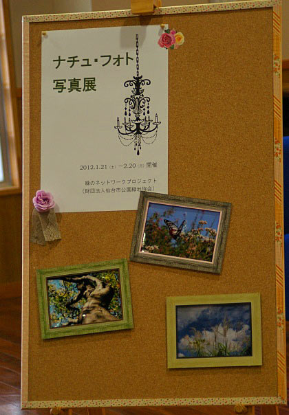 IMGP1hot4-99.jpg