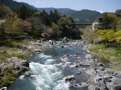 多摩川11