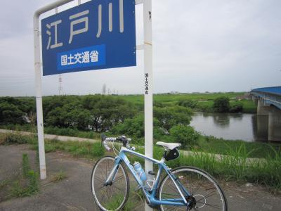 江戸サイトレック6