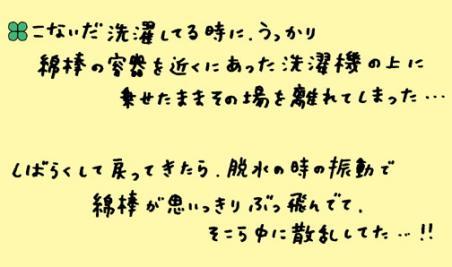 0804c2.jpg
