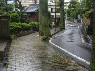 IMG_3555sakamichi.jpg