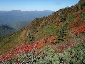31飛び出した稜線から眺める谷川方面の山々
