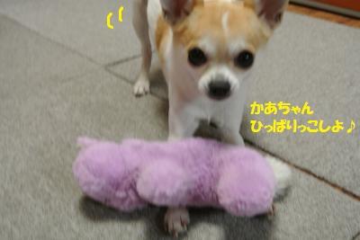 DSC_1284_convert_20131211105558.jpg