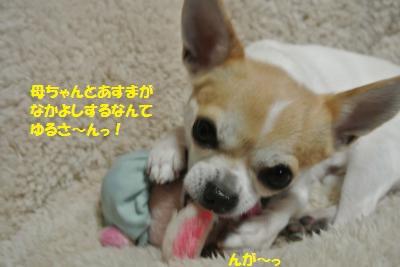 DSC_1571_convert_20131219103851.jpg