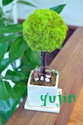 yujin4