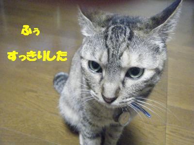 2010_06270079.jpg