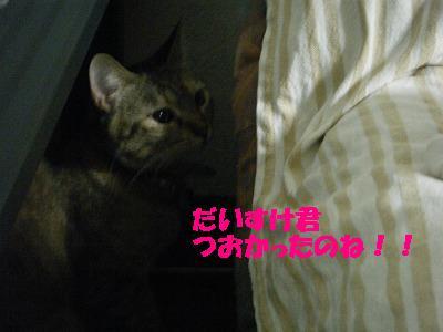 2010_071800731.jpg