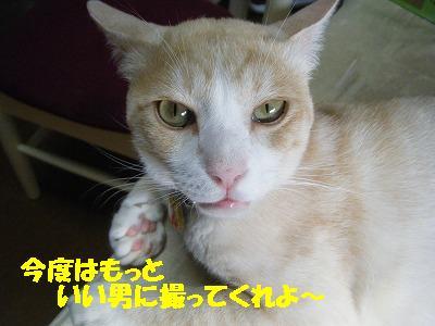 2010_072100491.jpg