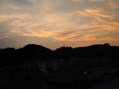 2010_072300361.jpg