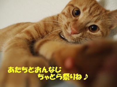 2010_072500671.jpg