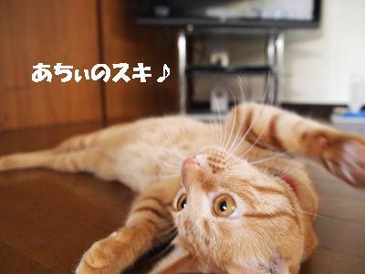 2010_072504881.jpg