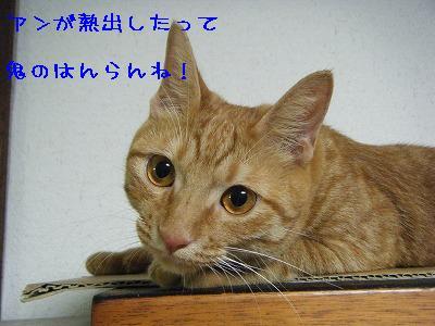 2010_081900171.jpg
