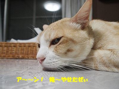 2010_0828011711.jpg