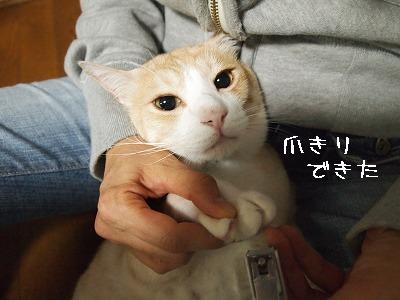 2010_092300661.jpg