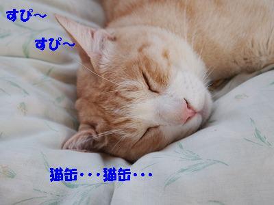 2010_101300421.jpg