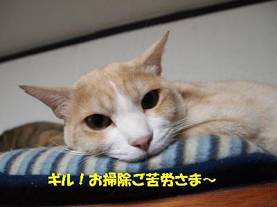2010_102700211.jpg