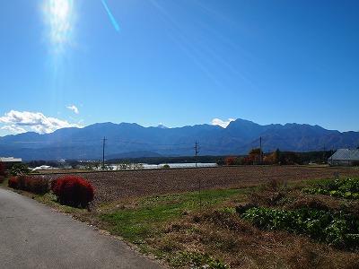 2010_110301031.jpg