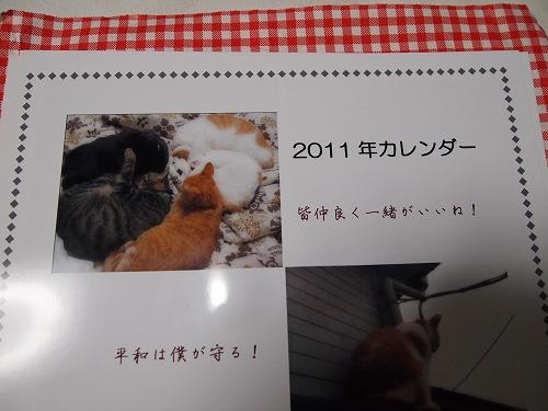 2010_122204471.jpg