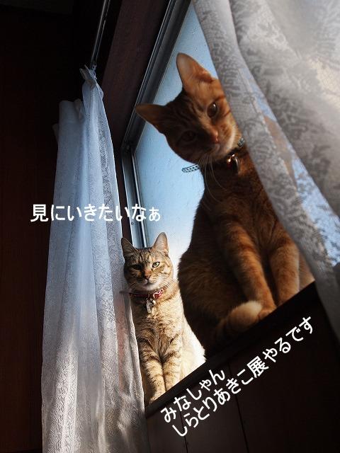 2011_0119清水00181