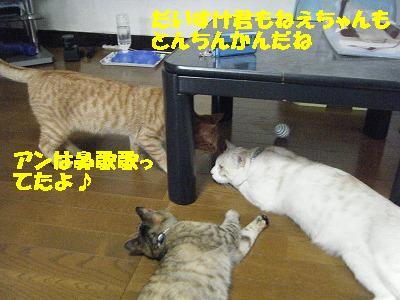 DSCF21401.jpg