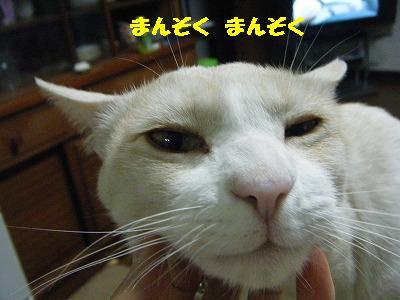DSCF21462.jpg