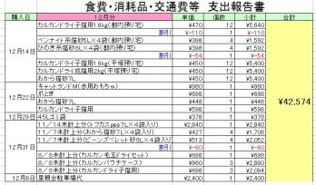 H24-12食費消耗品