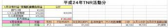 H24-01TNR.jpg