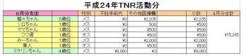 H24-06TNR.jpg