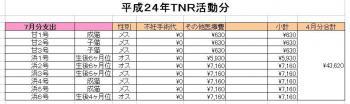 H24-07TNR_20120801145931.jpg