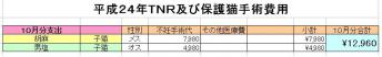 H24-10TNR.jpg