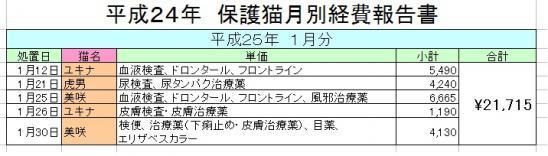 H2501_20130202023058.jpg