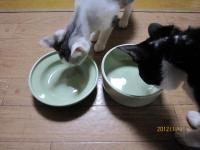 blog121212_7.jpg