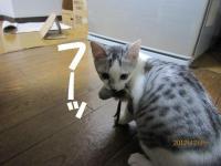 blog121218_2.jpg
