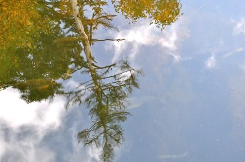 チミケップ湖2
