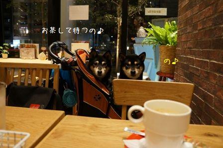 ドッグデプトカフェ①