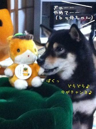 ぐんまちゃん&凜ちん③