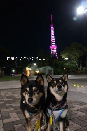 ピンクライトアップ東京タワー④