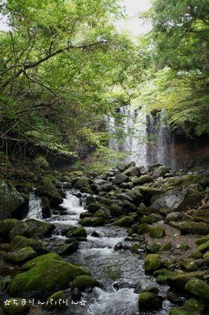 乙女の滝①