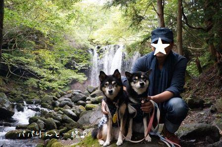 乙女の滝②