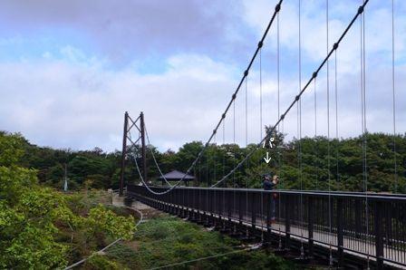 つつじ吊橋①