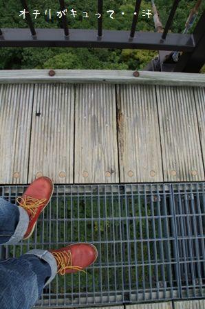 つつじ吊橋④