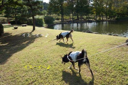 那珂川河畔公園①