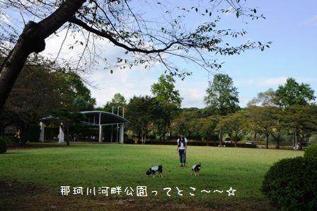 那珂川河畔公園②