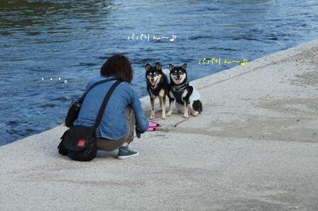 那珂川河畔公園⑧